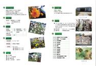 jpdf-02-asahinooka-b